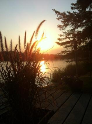 Sunrise Netley July 13 2012