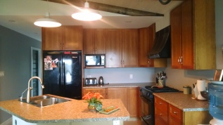 Kitchen counters arrived July 15