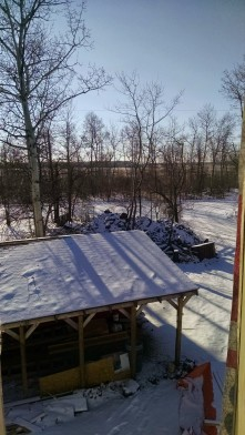 View from Back Hall Window Feb 1, 2015